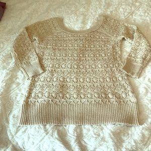 American Eagle Outfitters Knit Sparkly Sweater